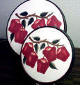 Ceramic Burner Covers New Apples