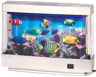 Medium Fake Fish Tank - Toy Aquarium