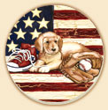 American Baseball Patriotic Coaster Set of 8