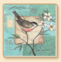 Birds & Butterflies 2 Bird Patterns Coaster Set of 8