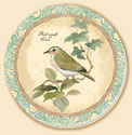A Natures Melody Garden Bird Coaster Set of 8
