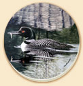 A Loon Birds Wildlife Coaster -Set of 8