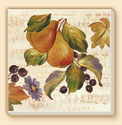 Autumn Gardens Fruit Design Coaster Set of 8