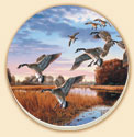 A Wildlife Birds Coaster Set of 8 - Daybreak Descent