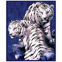 Blanket - Fleece Throw White Tigers